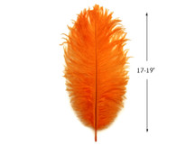 """10 Pieces - 17-19"""" Orange Large Bleached & Dyed Ostrich Drabs Body Feathers"""