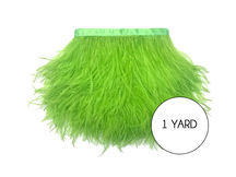 1 Yard - Lime Green Ostrich Fringe Trim Wholesale Feather (Bulk)