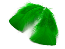 1 Pack - Kelly Green Dyed Turkey T-Base triangle Body Plumage Feathers 0.50 Oz.