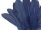 Midnight blue goose craft feathers