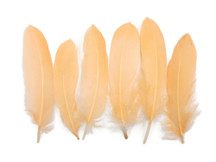 Peach Goose Satinettes Loose Feathers 0.3 Oz.