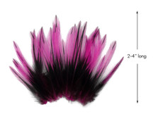 10 Pieces - Hot Pink Dyed BLW Laced Short Rooster Cape Whiting Farms Feathers