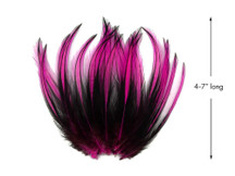 10 Pieces - Hot Pink Dyed BLW Laced Long Rooster Cape Whiting Farms Feathers