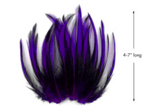 10 Pieces - Purple Dyed BLW Laced Long Rooster Cape Whiting Farms Feathers