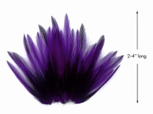 10 Pieces - Purple Dyed BLW Laced Short Rooster Cape Whiting Farms Feathers