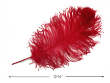 "10 Pieces -  12-16"" Red Dyed Ostrich Tail Fancy Feathers"