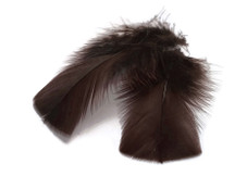 1 Pack - Brown Dyed Turkey T-Base triangle Body Plumage Feathers 0.50 Oz.