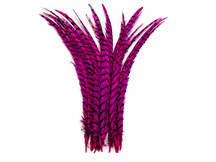 "5 Pieces - 25-30"" Hot Pink Zebra Lady Amherst Pheasant Tail Super Long Feathers"