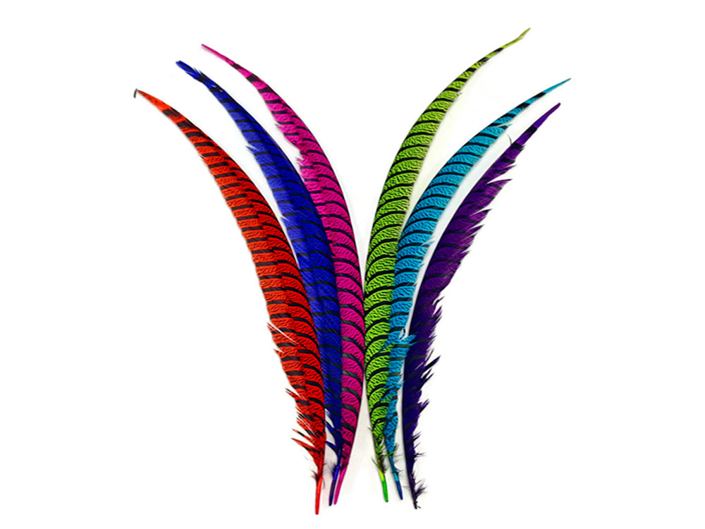 25-30 Hot Pink Zebra Lady Amherst Pheasant Tail Super Long Feathers 3393 Long Feathers 5 Pieces