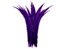 "5 Pieces - 25-30"" Purple Zebra Lady Amherst Pheasant Tail Super Long Feathers"