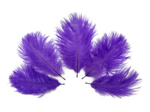 Wholesale Pack - Purple Ostrich Small Confetti Feathers (Bulk)