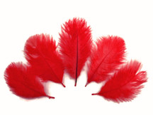 Wholesale Pack - Red Ostrich Small Confetti Feathers (Bulk)