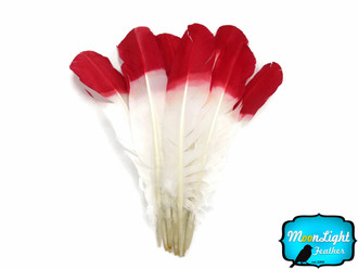 6 Pieces - Red Half Dipped Turkey Round Wing Quill Feathers
