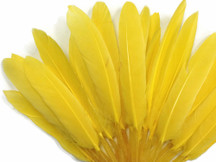 1/4 Lb. - Yellow Dyed Duck Cochettes Loose Wing Quill Wholesale Feather (Bulk)