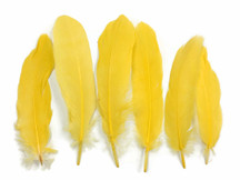 1 Pack - Yellow Goose Satinettes Loose Feathers 0.3 Oz.