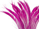Bright Candy Pink craft wispy feathers