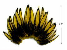 1 Dozen - Yellow Whiting Farms BLW Laced Hen Cape Loose Feathers