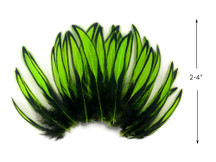 1 Dozen - Lime Green Whiting Farms BLW Laced Hen Cape Loose Feathers