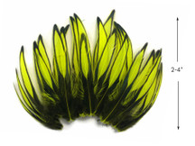 1 Dozen - Fluorescent Yellow Whiting Farms BLW Laced Hen Cape Loose Feathers