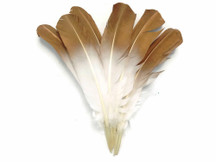 1/4 Lb - Gold Metallic Spray Paint Turkey Rounds Wing Quill Wholesale Feathers (Bulk)