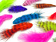 Brightly colored multipack neon puffy soft rooster feathers