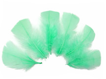 1/4 Lb - Aqua Turkey T-Base Plumage Wholesale Feathers (Bulk)