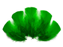 1/4 Lb - Kelly  Green Turkey T-Base Plumage Wholesale Feathers (Bulk)