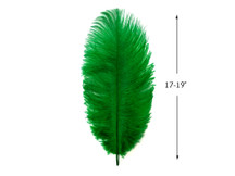 "10 Pieces - 17-19"" Kelly Green Large Bleached & Dyed Ostrich Drabs Body Feathers"
