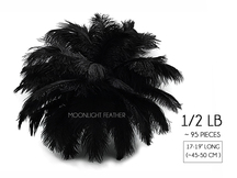 "1/2 Lb - 17-19"" Black Ostrich Large Drab Wholesale Feathers (Bulk) Swa"