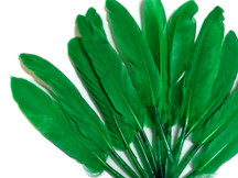 1/4 Lb. - Kelly Green Dyed Duck Cochettes Loose Wing Quill Wholesale Feather (Bulk)