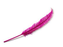 Hot Pink Long Ostrich Nandu Trimmed Feathers