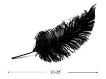 "10 Pieces - 20-28"" Black Ostrich Spads Large Feathers"