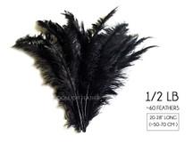 """1/2 Lb - Black Large Ostrich Spads Wholesale Feathers 20-28"""" (Bulk)"""