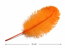 "10 Pieces -  12-16"" Orange Dyed Ostrich Tail Fancy Feathers"