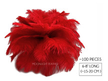 "100 Pieces - 6-8"" Red Wholesale Ostrich Body Drabs Feathers (Bulk)"