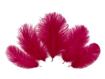 Wholesale Pack - Claret Ostrich Small Confetti Feathers (Bulk)