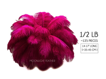 "1/2 Lb - 14-17"" Magenta Ostrich Large Drab Wholesale Feathers (Bulk)"
