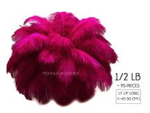 "1/2 Lb - 17-19"" Magenta Ostrich Drab Wholesale Feathers (Bulk)"