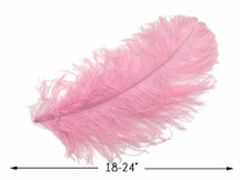 "2 Pieces - 18-24"" Baby Pink Large Prime Grade Ostrich Wing Plume Centerpiece Feathers"