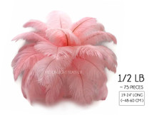 "1/2 Lb - 19-24"" Light Pink Ostrich Drabs Wholesale Feathers (Bulk) Swa"