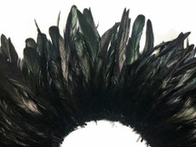 Black Strung Natural Bleach And Dyed Coque Tails Feathers