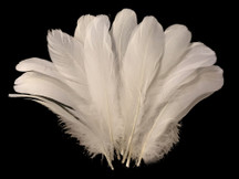 1/4 Lb - Ivory Goose Nagoire Wholesale Feathers (Bulk)