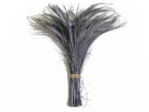 50 Pieces - Silver Grey Bleached Peacock Swords Cut Wholesale Feathers (Bulk)
