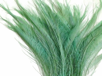 Aqua Green Bleached Peacock Swords Cut Feathers