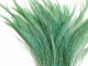 Aqua Green Bleached Peacock Swords Cut Feathers