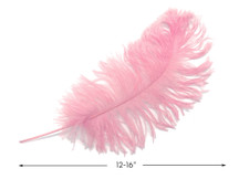 "10 Pieces -  12-16"" Light Pink Dyed Ostrich Tail Fancy Feathers"