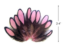 1 Dozen - Light Pink Whiting Farms Laced Hen Saddle Feathers