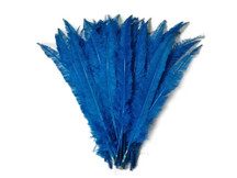 Turquoise Blue Ostrich Nandu Trimmed Long Wholesale Feathers (Bulk)