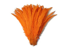 Orange Ostrich Nandu Trimmed Long Wholesale Feathers (Bulk)