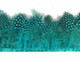 Peacock Blue Guinea Hen Plumage Feather Trim